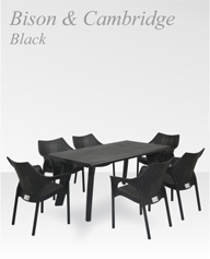 bison-with-cambridge-black