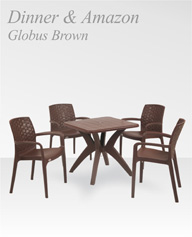 dinner-with-amazon-globus-brown